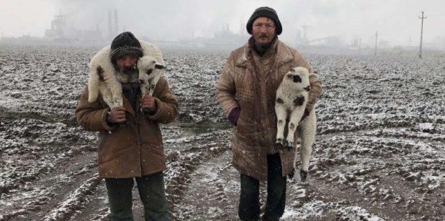 Un fotograf de origine română, desemnat marele câştigător al iPhone Photography Awards