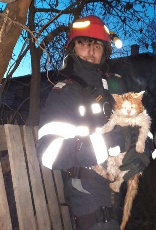 Vâlcea: Pompierii au coborât într-o fântână cu adâncimea de 18 metri pentru a salva o pisică